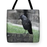 Jackdaw - Stare Tote Bag