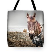 Jacketed Horse Tote Bag