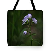 Jacob's Ladder Upper Buffalo Wilderness Tote Bag