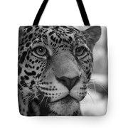 Jaguar In Black And White Tote Bag