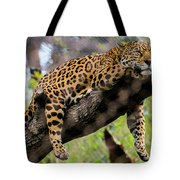 Jaguar Relaxation Tote Bag