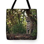 Jaguar Sitting In Trees In Dappled Sunlight Tote Bag