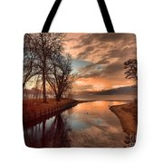 January 15 2010 Tote Bag