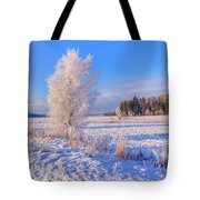 January Day Tote Bag