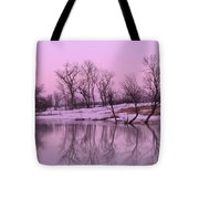 January Thaw  Tote Bag by Lori Frisch