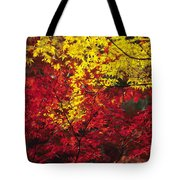 Japan Vibrant Leaves Tote Bag