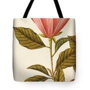 Japanese Bigleaf Magnolia Tote Bag