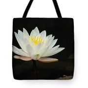 Japanese Garden Lily  Tote Bag by Ward Photography