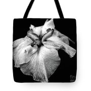 Japanese Iris In Black And White Tote Bag
