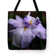 Japanese Iris In Bloom Tote Bag