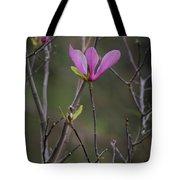 Japanese Magnolia Tote Bag