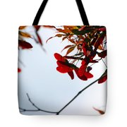 Japanese Maple 1589 Tote Bag