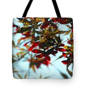 Japanese Maple 1592 Tote Bag