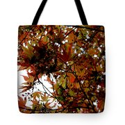 Japanese Maple 2011-1 Tote Bag