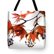 Japanese Maple 2011-2 Tote Bag