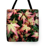 Japanese Maple Tote Bag by Cynthia Adams