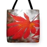 Japanese Maple Leaf 1 Tote Bag