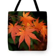 Japanese Maple Leaves Tote Bag by Patricia Strand
