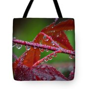 Japanese Maple On A Rainy Day Tote Bag