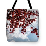 Japanese Maple Red Lace - Horizontal View Downwards Right Tote Bag