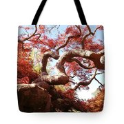 Japanese Maple Tree In Spring Tote Bag