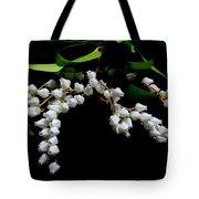 Japanese Pieris 2011-3 Tote Bag