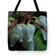 Japanese Pieris 2011-4 Tote Bag
