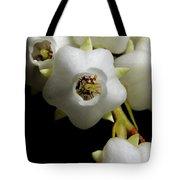Japanese Pieris 2011-7 Tote Bag