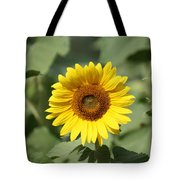 Jarrettsville Sunflowers - The Star Of The Show Tote Bag