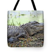 Jarvis Creek Gator Tote Bag