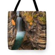 Jasper Maligne Canyon Waterfall Tote Bag
