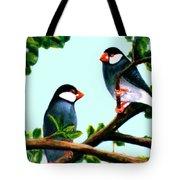 Java Sparrows  #102 Tote Bag