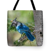Jay Bird Tote Bag