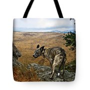 Jazz On The Rocks Tote Bag