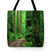 Jedediah Smith Redwoods                            Tote Bag
