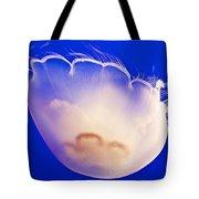 Jelly In Jellyfish Tank In Monterey Aquarium-california Tote Bag