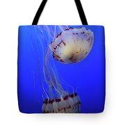 Jellyfish 1 Tote Bag