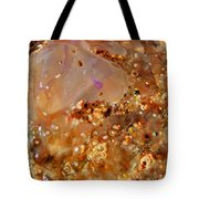Jellyfish On The Sand. Tote Bag