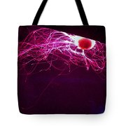 Jellyfish Wall Art Tote Bag