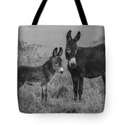 Jenny And Little Jack Tote Bag