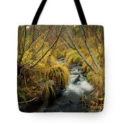 Jenny Creek In Autumn Tote Bag