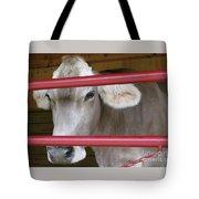 Jersey Calf Tote Bag