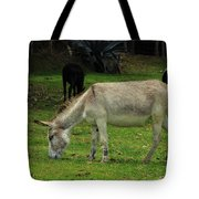 Jerusalem Donkey Grazing In A Field Tote Bag