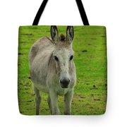 Jerusalem Donkey On A Farm Tote Bag