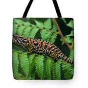 Jeweled Chameleon Furcifer Lateralis Tote Bag