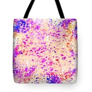 Jewels In The Sky Tote Bag