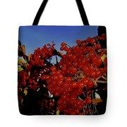 Jewels Of Autumn 4 Tote Bag
