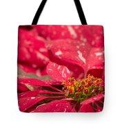 Jingle Bells 3 Poinsettia Tote Bag