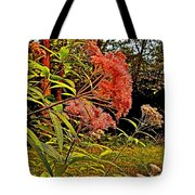 Joe-pye-weed Near Schroon River In New York Tote Bag