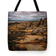 Joggins Fossil Cliffs Tote Bag